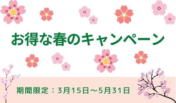 お得な春のキャンペーン_コピー